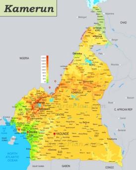 Physische landkarte von Kamerun